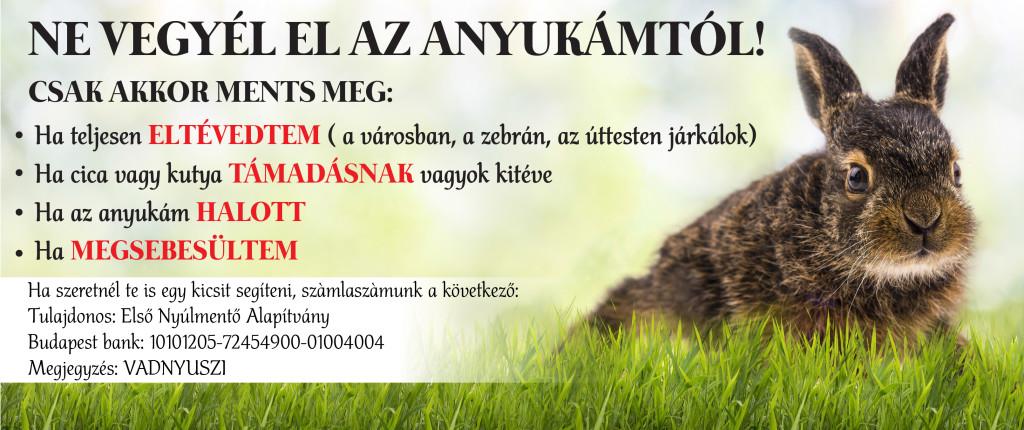 hare_rescue_boritokep